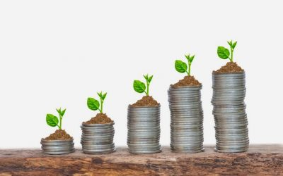 CII: Improvements in compliance, quality of disclosures & spends on CSR