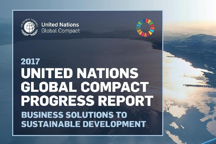 Business Report on the SDGs: An analysis of the goals and targets