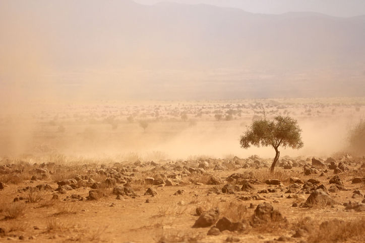 AiG: Federal Climate Review: Further progress towards durable climate policy