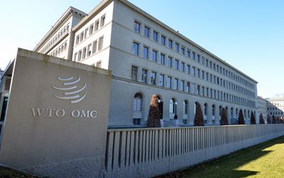"""WTO DG FAREWELL REMARKS: """"Delivering on both the multilateral front and the joint initiatives will be vital for the future of the system"""""""